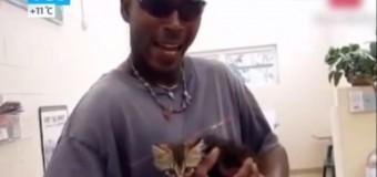 Водитель разрезал свою машину, чтоб спасти котенка. Видео