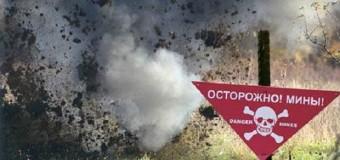 В Донецкой области дети подорвались на мине. Видео.