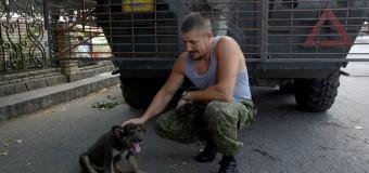 Боевые будни батальона ОУН. Видео
