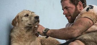 Собака за другом преодолела 692 километра по джунглям Эквадора. Фото