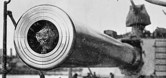 Уникальные снимки боевых животных времен Первой мировой. Фото