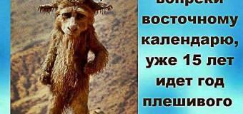 Фотожабы на цирк в Кремле «разрывают» сеть. Фото