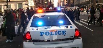 В Британии мужчину арестовали за ужин на крыше полицейской машины. Фото