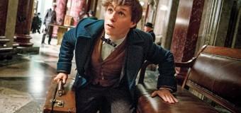 Опубликованы первые кадры спин-оффа Гарри Поттера. Фото
