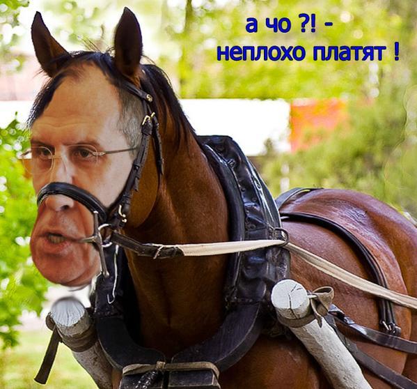"""Директора госпредприятия """"Коневодство Украины"""" задержали на взятке в размере $35 тысяч - Цензор.НЕТ 9592"""