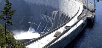 Огромный сом застрял в гребле ГЭС на Дунае. Фото