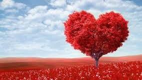 Потрясающие подарки на День святого Валентина «взорвали» сеть. Фото
