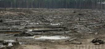 В Ровенской области руководство полиции подозревают в «крышевании» добычи янтаря