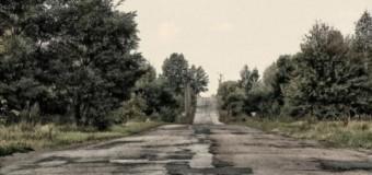 В Чернобыльской зоне появится заповедник