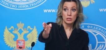 Подчиненные Путина рассмешили интернет «любовью к лягушкам». Фото