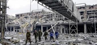 В разрушенном донецком аэропорту зародилась жизнь. Фото
