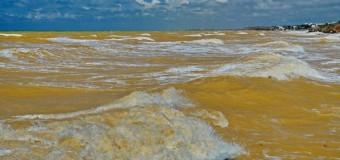 Черное море в Крыму пожелтело. Фото
