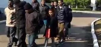 Пограничники задержали на границе с Венгрией 11 нелегалов. Видео