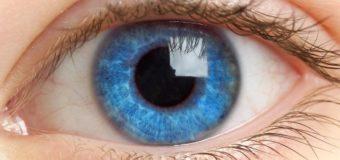 Врачи готовы провести уникальную операцию по пересадке сетчатки глаза