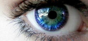 Ученые: взгляд «глаза в глаза» должен длиться около 3 секунд
