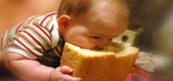 В Украине могут возникнуть проблемы с хлебом