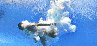 Курьез с прыгуном в воду развеселил сеть. Видео