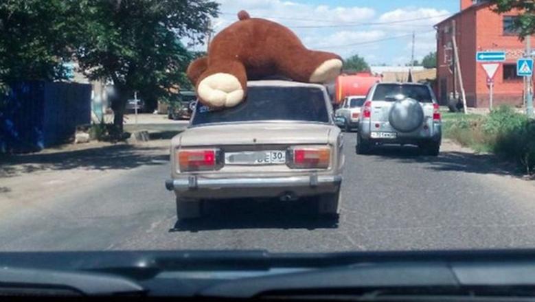 Медведь на машине