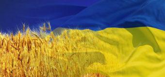 В Донецке храбрые патриоты испортили настроение оккупантам. Фото