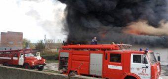 Пожар в Броварах под Киевом: площадь возгорания 500 квадратных метров. Фото