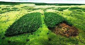 Донбасс и Крым находится на пороге экологической катастрофы
