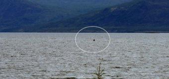 В сибирском озере рыбака шокировало громадное чудовище
