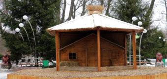 В киевском зоопарке открывают дворец для кучерявого петуха. Фото