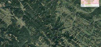Настоящая жуть с высоты птичьего полета: как лысеют карпатские леса. Видео