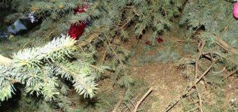 В Измаиле вандалы раскурочили праздничную шестиметровую елку
