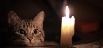 Стали известны причины, почему часть Киева осталась без света