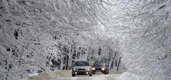 Ситуация с аварийностью на дорогах 10 регионов оценивается как критическая. Фото