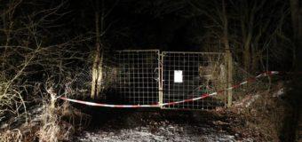Смертельная вечеринка в Германии: отец нашел 6 трупов подростков в саду. Видео