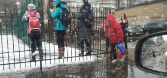 Сеть в шоке: киевские гимназисты ходят в школу по забору. Фото