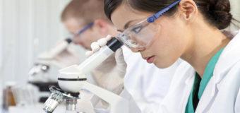 Ученые нашли способ массового производства крови