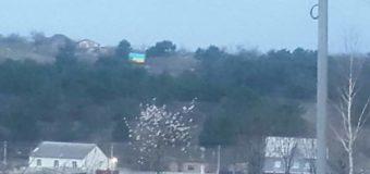 Симферополь передал привет континенту родным флагом. Фото