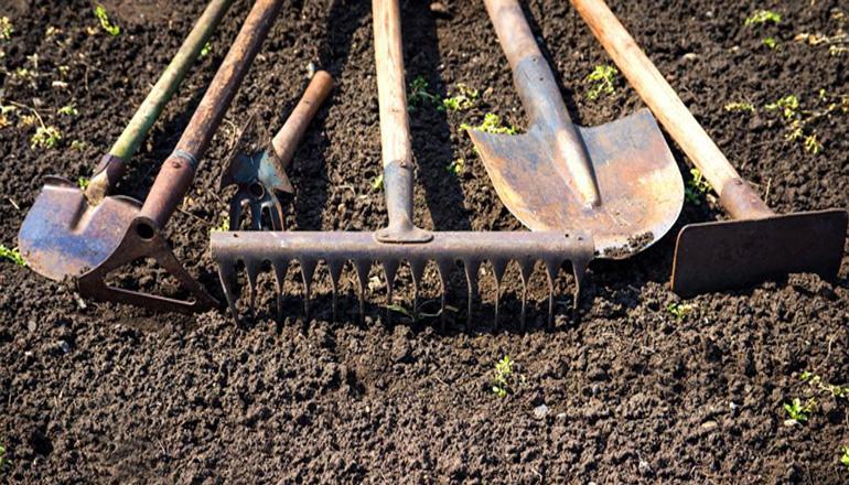 На Киевщине пенсионер откопал в огороде скелет