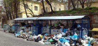 Власти Львова создали отдельный «мусорный» департамент