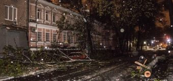 В Днепре непогода повалила почти три тысячи деревьев. Фото