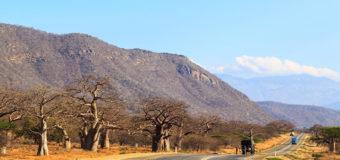 ЧП в Танзании: автобус упал в овраг, погиб 31 человек