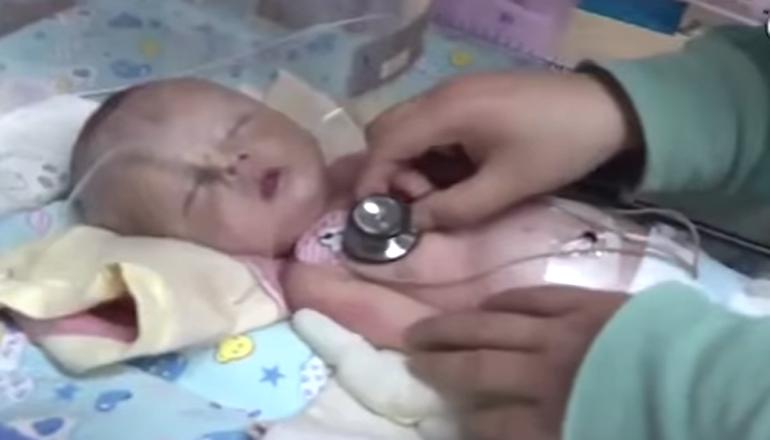 В Китае собака спасла похороненного заживо ребенка