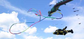 На Николаевщине в небе летали «крокодил» и «коровы». Фото