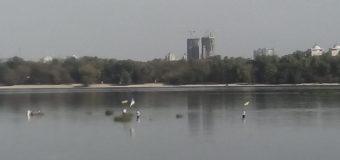 Из-за незаконной добычи песка река Днепр в Киеве обмелела. Фото