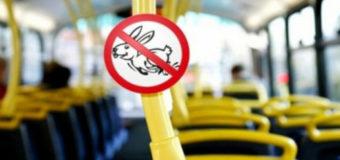 В Киеве предлагают увеличить штрафы для «зайцев»