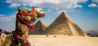 Египет ввел для украинцев электронные визы