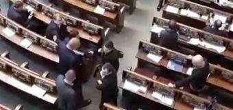 Мосийчук: Савченко принесла в Раду гранаты и пистолет. Видео