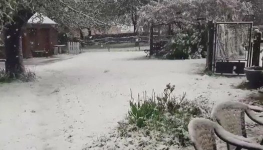 Во Франции выпал снег. Фотофакт