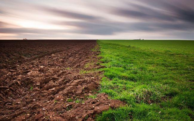 На Львовщине чиновник потребовал 300 тысяч за землю для участника АТО