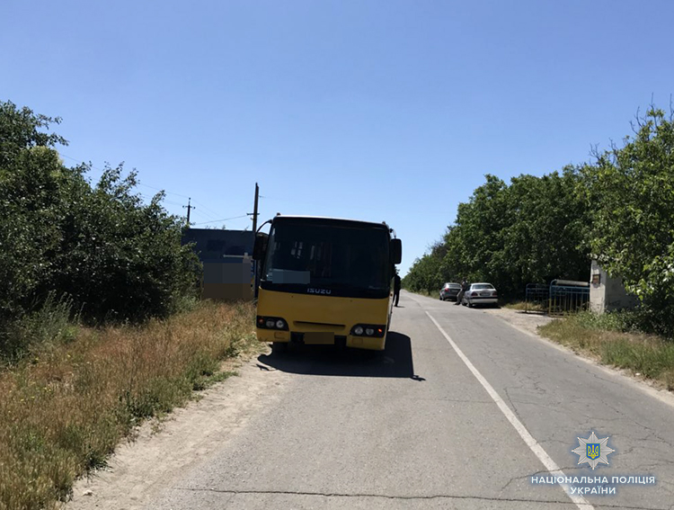В Запорожской области погибла школьница