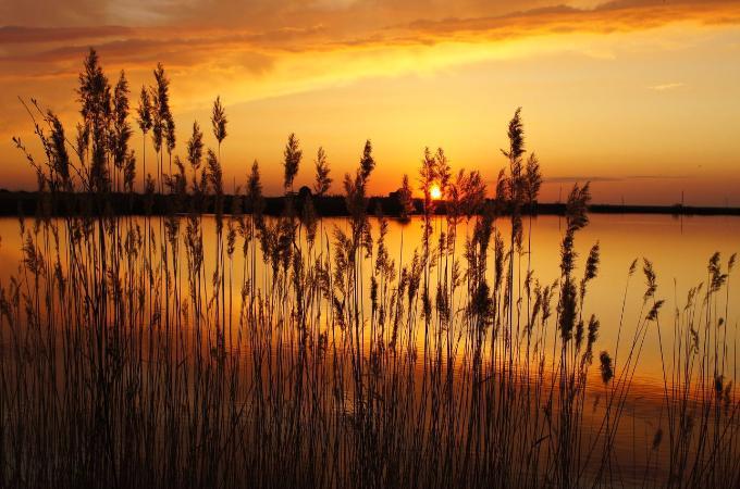 В США загадочно «запела» река