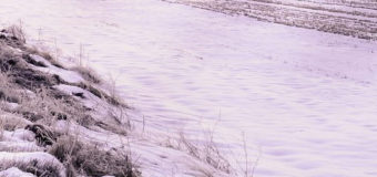 На Днепропетровщине застрял в снегу автобус с 30 пассажирами